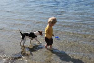 Sigge och L utforskar havet.