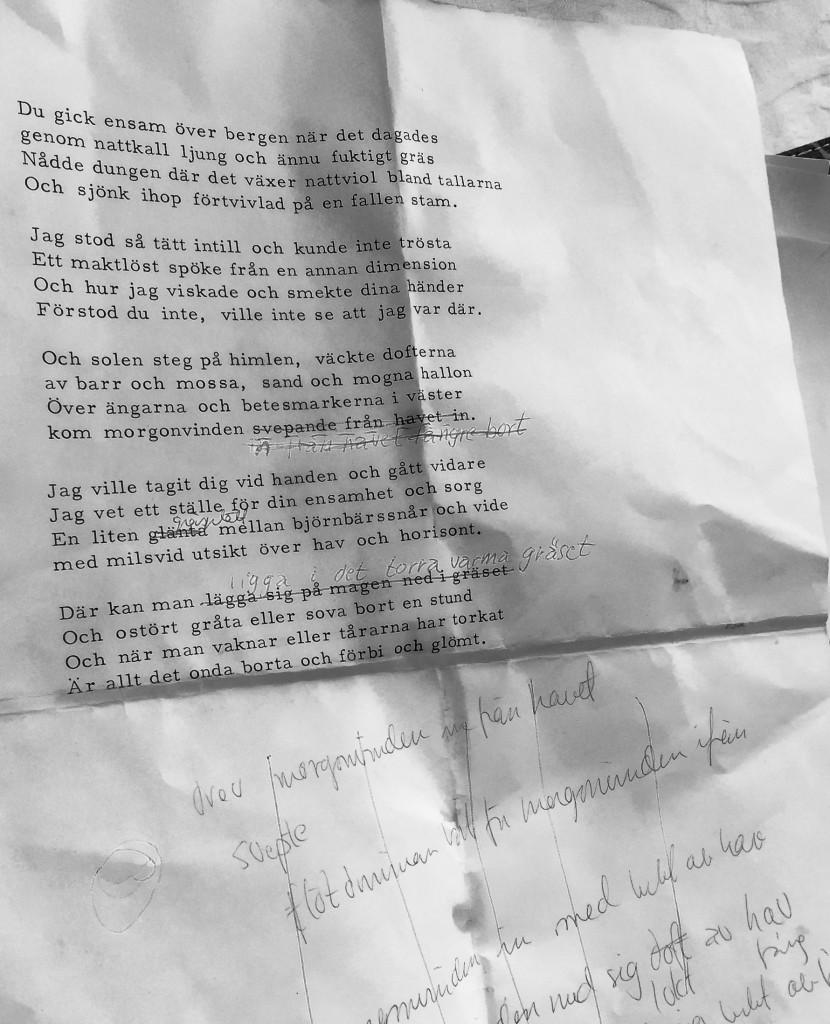 dikt-2